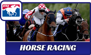 horse-racing300