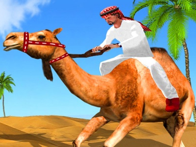 Virtual Camel Racing
